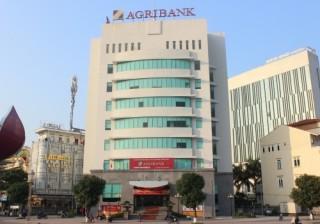 Agribank Đông Quảng Ninh đẩy mạnh công tác phối hợp thu ngân sách