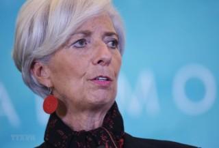 """ECB sẽ """"hoàn hảo"""" khi bà Lagarde là Chủ tịch"""