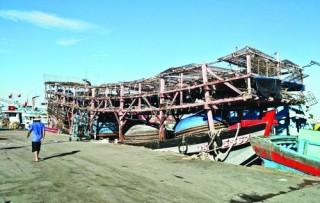 Hải sản ứ đọng do xuất khẩu gặp khó