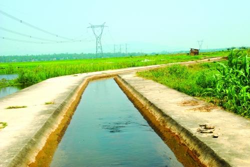 Hiệu quả vốn ODA trong nông nghiệp