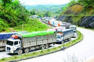 Để nông sản xuất khẩu không gặp khó