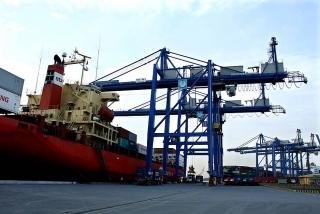 TP.HCM tính thu phí khu vực cửa khẩu cảng biển