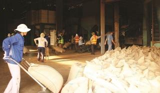 Dịch bệnh tác động tiêu cực đến kinh tế địa phương