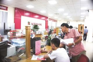 Thúc đẩy sản xuất kinh doanh, tái khởi động nền kinh tế
