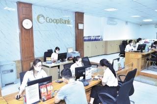 Ngân hàng Hợp tác xã Việt Nam chi nhánh Hai Bà Trưng: Hỗ trợ quỹ tín dụng nhân dân và phát triển kinh tế địa phương