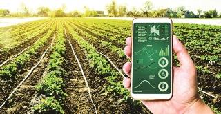 Nông nghiệp công nghệ cao: Không chỉ là nguồn vốn