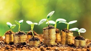 Tín dụng thúc đẩy tăng trưởng xanh
