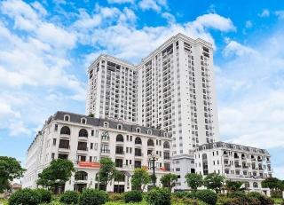 Nhiều động lực đang thúc đẩy thị trường bất động sản