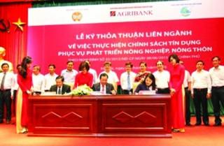 10 năm triển khai Nghị quyết 26-NQ/TW: Khẳng định vai trò vốn tín dụng