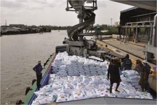 Cơ hội bứt phá cho xuất khẩu gạo