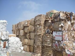 Công bố vi phạm và khởi tố các đối tượng nhập khẩu phế liệu
