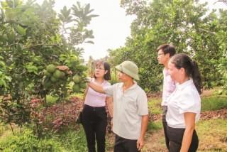 Hiệu quả tín dụng ưu đãi ở vùng ven đô Hà Nội