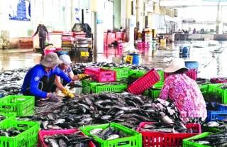 Ổn định thị trường cho mặt hàng hải sản