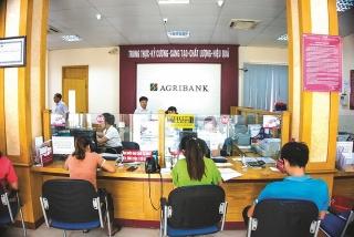 Agribank - Thi đua tạo động lực phát triển bền vững