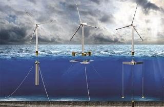 Phát triển điện gió: Cần thêm quy định về tác động môi trường và xã hội