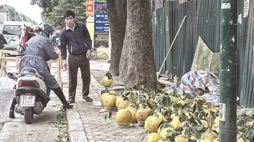 Hà Nội siết chặt kinh doanh trái cây
