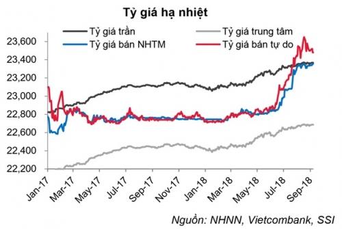 NHNN đã không để chênh lệch lãi suất USD và VND cao, tránh áp lực lên tỷ giá