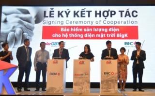 BIC cung cấp gói bảo hiểm sản lượng điện BigKilowatt
