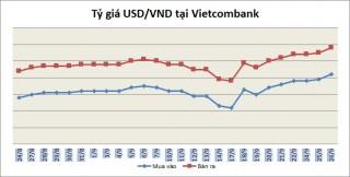 Tỷ giá ngày 26/9: Một số ngân hàng điều chỉnh tăng