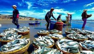 Tăng lượng hàng thủy sản bán ở nội địa