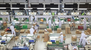 Lập bộ tiêu chí an toàn để tái sản xuất