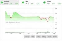 Chứng khoán chiều 16/9: Lực kéo từ nhóm vốn hóa lớn giúp thị trường hồi phục