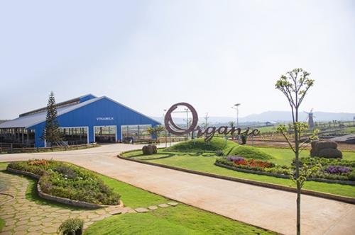 SCIC bán tiếp 3,33% vốn Nhà nước tại Vinamilk và được nhận đặt cọc bằng ngoại tệ