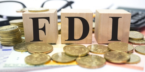 Thu hút FDI: Xây tổ cho phượng hoàng nào ở?