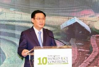 Xuất khẩu gạo Việt Nam đã chuyển dần từ lượng sang chất
