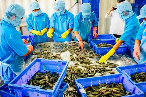 Tạo thuận lợi để xuất khẩu vào ASEAN