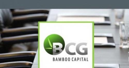 BCG: Triển vọng từ bất động sản và năng lượng tái tạo