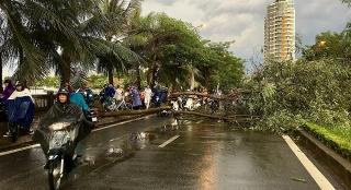 Mưa bão gây thiệt hại lớn tại Thừa Thiên - Huế