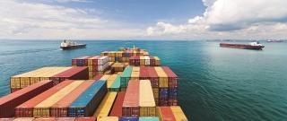 Tăng cường giám sát nhằm khai thác các lợi thế của FTA