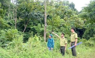 Bảo tồn đa dạng sinh học gắn với phát triển kinh tế