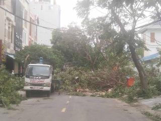 Phóng sự ảnh: Đà Nẵng sau cơn bão số 9