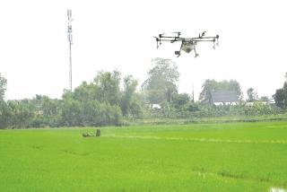 Nông nghiệp Việt chuyển đổi số để cạnh tranh