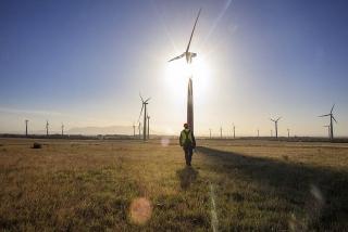 HSBC hỗ trợ tín dụng xanh cho điện gió Việt Nam