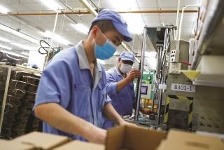 Doanh nghiệp Nhật tăng đầu tư vào Việt Nam