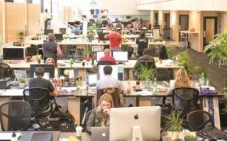 Quỹ đầu tư mạo hiểm: Cặp bài trùng của startup