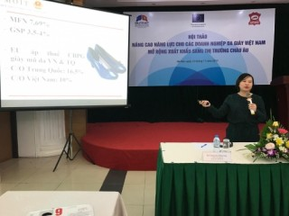 """Giúp DN da giày Việt Nam """"vượt rào"""" vào châu Âu"""
