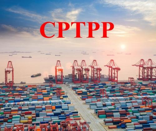 Việt Nam sẽ có nhiều cơ hội khi tham gia CPTPP