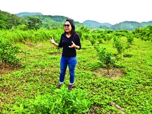 Bệ đỡ vững chắc cho nền nông nghiệp hữu cơ