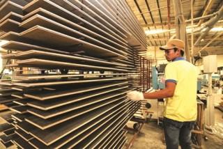 Giảm thiểu rủi ro để phát triển ngành gỗ bền vững