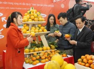 Lễ hội cam Vinh diễn ra tại Hà Nội