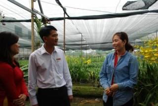 TP.HCM: Tín dụng ngân hàng góp phần vốn lớn cho phát triển nông thôn mới