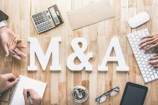 M&A: Nhà đầu tư Việt đang gia tăng mua lại