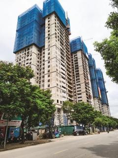 Thị trường bất động sản đang dần phục hồi