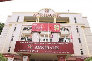 Agribank Chi nhánh tỉnh Sơn La: Huyền thoại nơi đại ngàn
