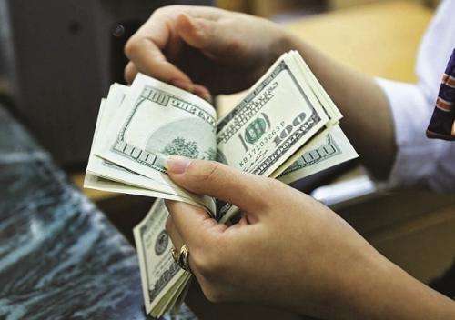 Dự trữ ngoại hối có thể đạt trên 50 tỷ USD: 'Tấm đệm' tốt cho nền kinh tế