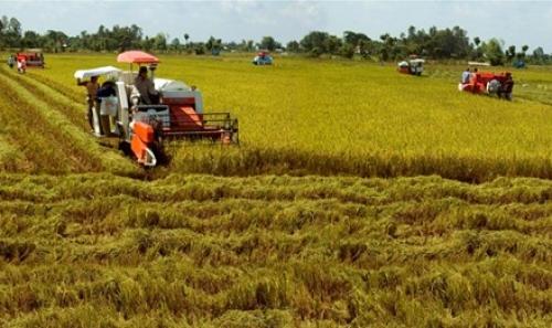 Nam Định: Từ 2016-2020, chuyển 8.266,29 ha đất nông nghiệp sang phi nông nghiệp